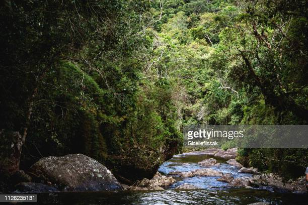 Belle cascade en Alto Caparaó - Minas Gerais Brésil