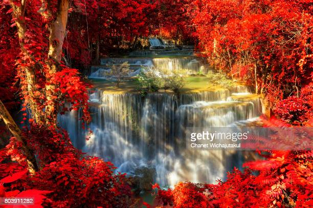Beautiful waterfall in autumn forest, deep forest waterfall.