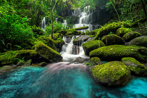 beautiful waterfall in green forest in jungle 503566158