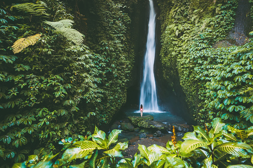 Beautiful waterfall with tropical plants . and woman traveller in Bali, Indonesia 955952442
