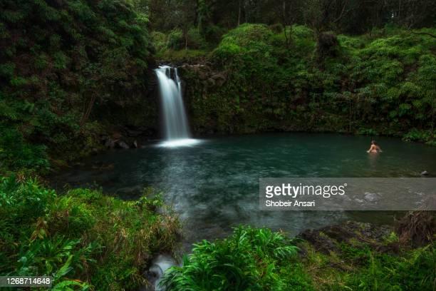 beautiful waterfalls on the road to hana, maui, hawaii - hawaiian waterfalls stock pictures, royalty-free photos & images