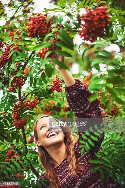 Beautiful woman and a rowan tree
