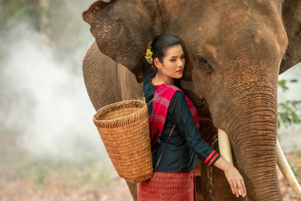 Beautiful woman and elephant at Thailand