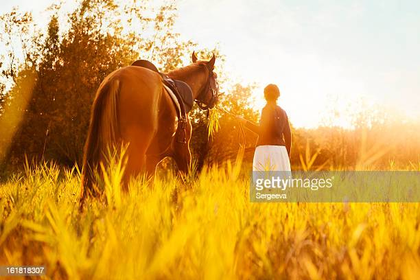 beautiful woman and  horse - thoroughbred horse stock photos and pictures