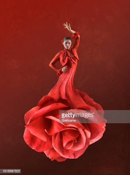 beautiful woman dancing flamenco with red rose - flamenco dancing stock photos and pictures
