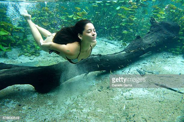 a beautiful woman diving in clear water - parco nazionale di chapada diamantina foto e immagini stock