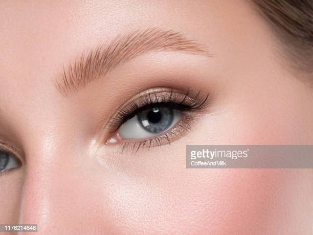 beautiful woman face - eyebrow stock pictures, royalty-free photos & images