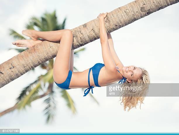 beautiful woman hanging on a palm tree by the ocean - erotikbilder stock-fotos und bilder
