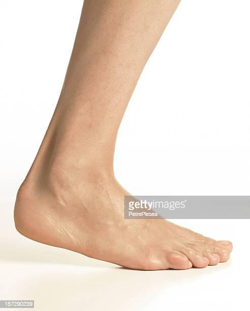 beautiful woman leg series - human body part photos stock photos and pictures