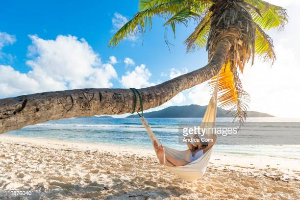 a beautiful woman lying down on a hammock in a tropical beach - seychelles stock pictures, royalty-free photos & images