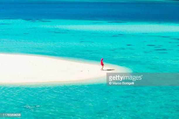 beautiful woman on a tropical beach - island stock pictures, royalty-free photos & images