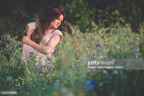 beautiful woman on field at dusk - bogdan negoita stock pictures, royalty-free photos & images