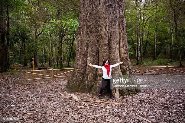beautiful woman open the arms in front of a giant tree. - vivero - fotografias e filmes do acervo