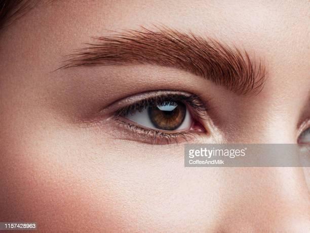 美しい女性 - 眉 ストックフォトと画像