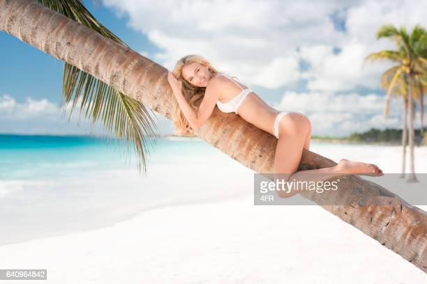 beautiful woman relaxing on a palm tree, tulum, mexico - tulum mexico stock photos and pictures