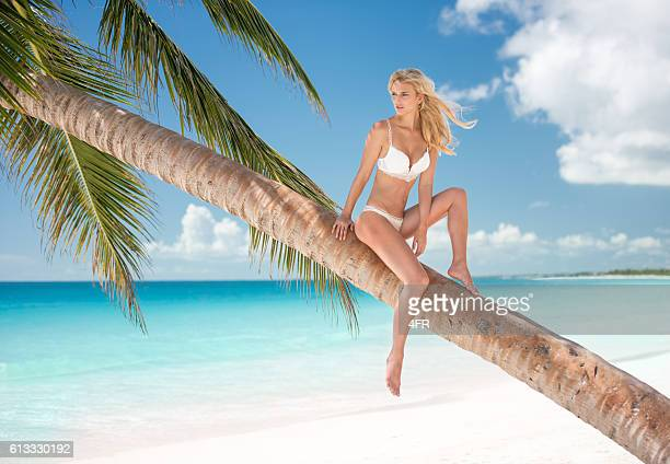 beautiful woman sitting on a palm tree by the ocean - young hot chicks stock photos and pictures