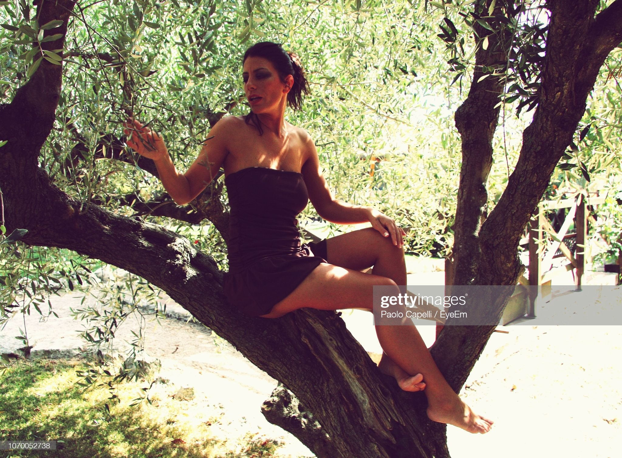 https://media.gettyimages.com/photos/beautiful-woman-sitting-on-tree-picture-id1070052738?s=2048x2048