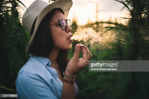 beautiful woman smoking marijuana in plantation. - smoking issues stock pictures, royalty-free photos & images