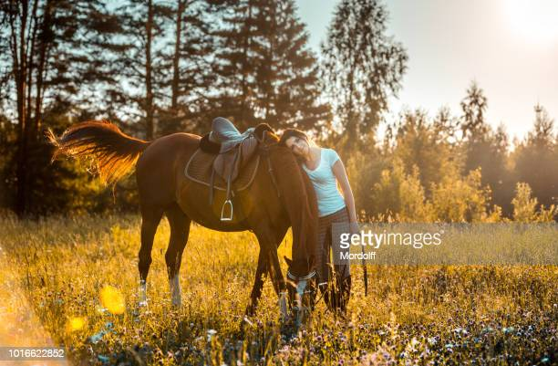 beautiful woman with brown horse on meadow in sunset light beams - dressage horse russia stock photos and pictures