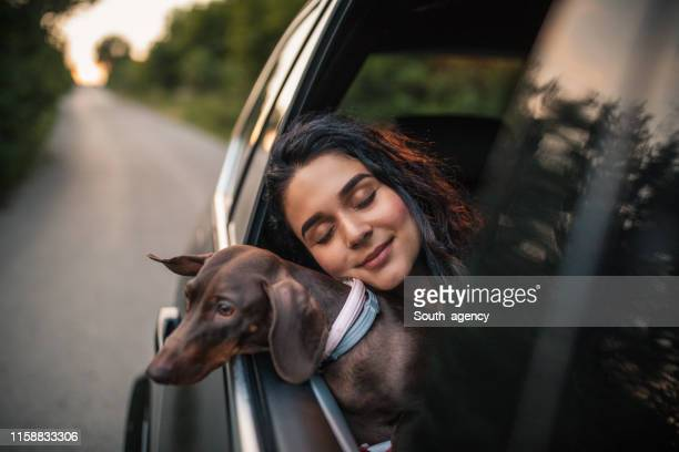 beautiful woman with dog - hound stock pictures, royalty-free photos & images