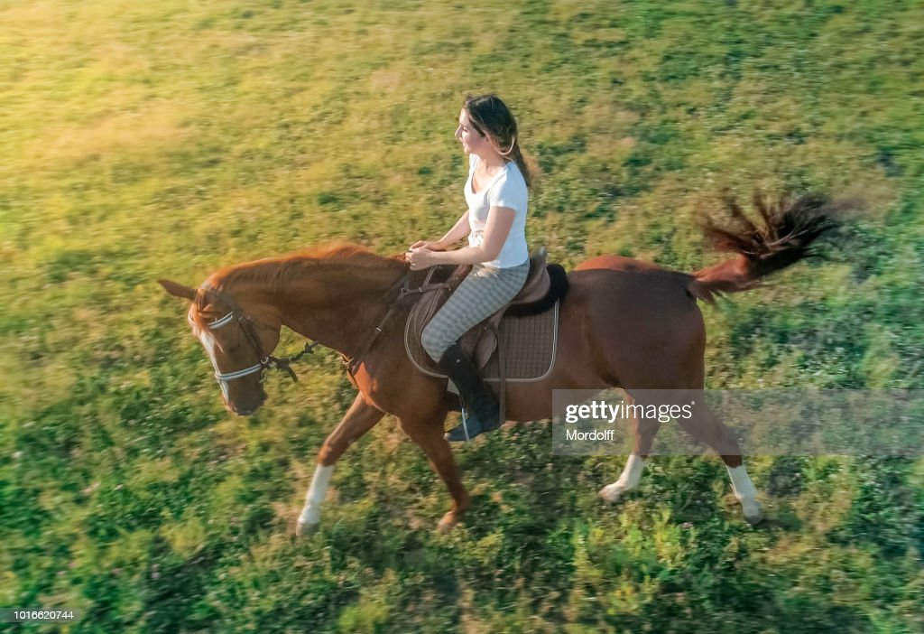 Beautiful Woman with Horse : Stock Photo