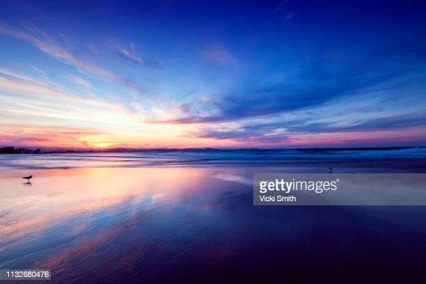 beautiful yellow and blue sky sunrise over the ocean - avondschemering stockfoto's en -beelden