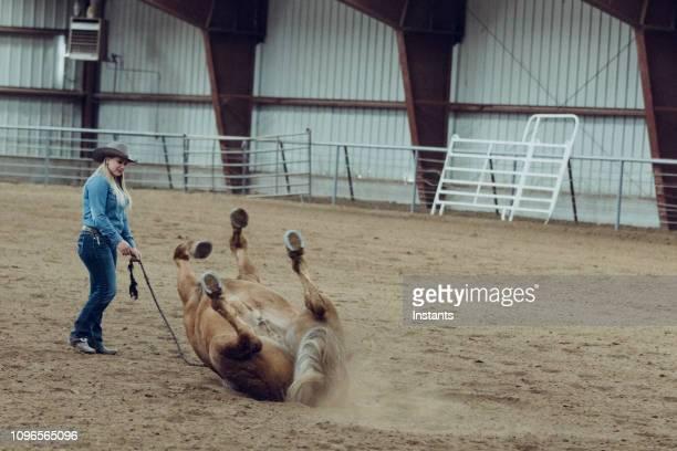 mooie jonge cowgirl opleiding van haar paard in een arena. - stunt stockfoto's en -beelden