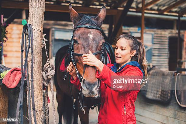 Beautiful young rider preparing a horse for equestrian training