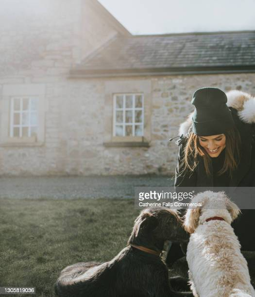 beautiful young smiling woman kneels down to pet two dogs, while wearing warm clothing. - warm clothing stock pictures, royalty-free photos & images