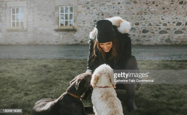 beautiful young smiling woman kneels down to pet two dogs, while wearing warm clothing. - headwear stock pictures, royalty-free photos & images