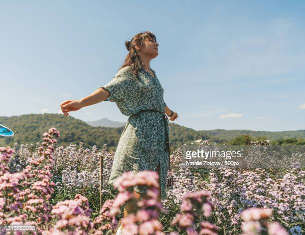 beautiful young woman in dress walking in margaret flowers field,kuv niam forest,thailand - floral pattern stock pictures, royalty-free photos & images