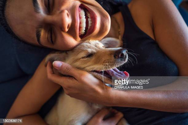 beautiful young woman playing with a puppy - puppies stock pictures, royalty-free photos & images