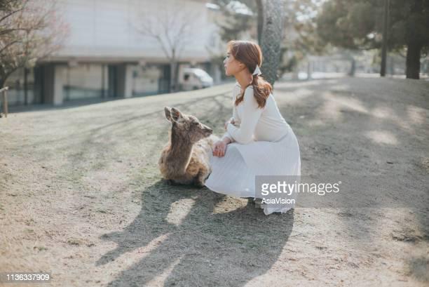 美しい晴れた日に公園で鹿の隣の草の上に座っている美人の若い女性 - 奈良市 ストックフォトと画像