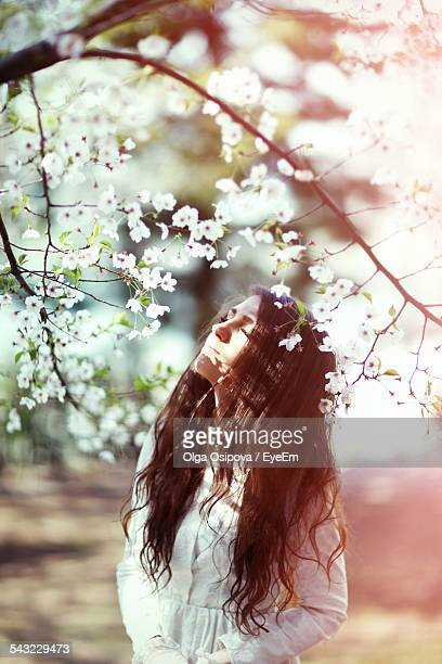 Beautiful Young Woman Standing By Cherry Blossom