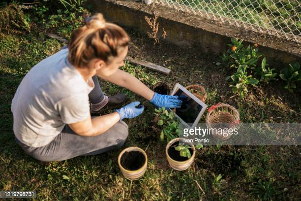 Beautiful young woman taking care of her garden