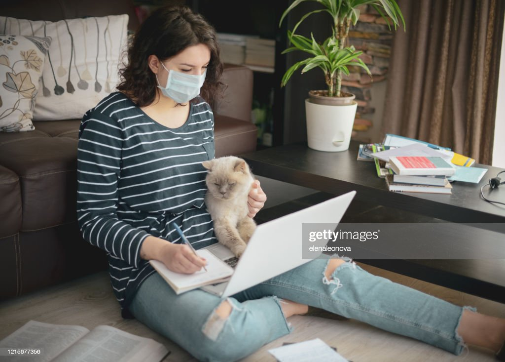 Beautiful young woman working at home with cat ( in the mask) : Stock Photo