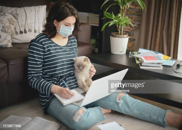 beautiful young woman working at home with cat ( in the mask) - cat face mask stock pictures, royalty-free photos & images