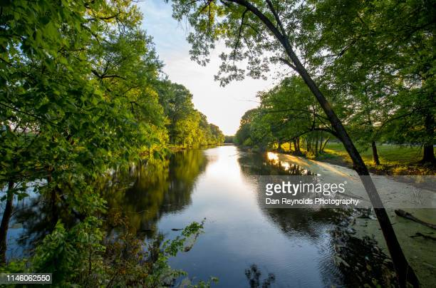 beauty and nature landscape - atlanta georgia stock pictures, royalty-free photos & images