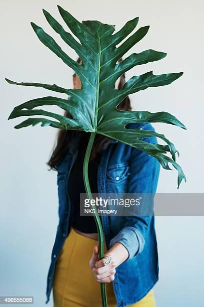 Schönheit hinter einer Pflanze