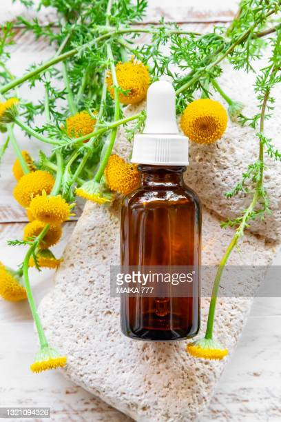 beauty concept of serum or essential oil for the care of skin and hair in cosmetic amber bottle with dropper on white background. bioproduct, organic cosmetics. - tansy stock pictures, royalty-free photos & images