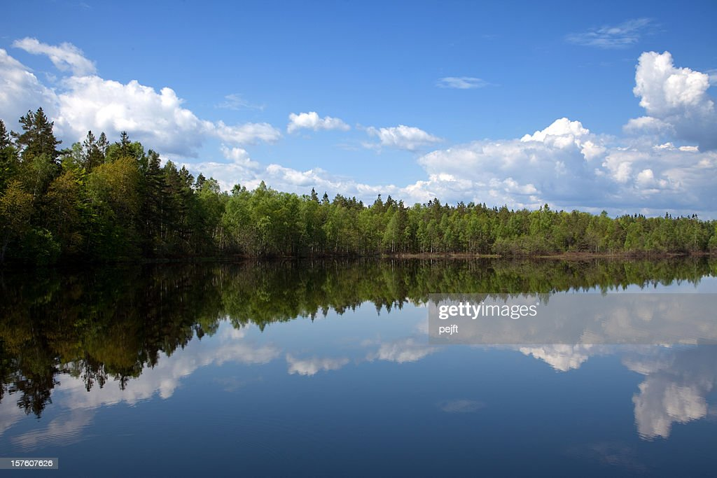 Beauty in nature lake with mirroring cloudscape and forest : Stock Photo