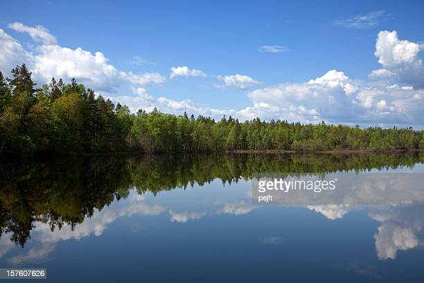 Beauty in nature lake with mirroring cloudscape and forest