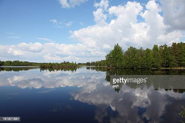 beauty in nature lake with mirroring cloudscape and forest - pejft stock pictures, royalty-free photos & images