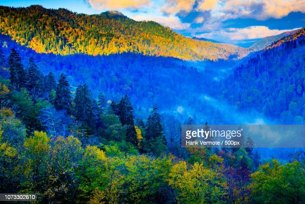 beauty in the smokies - hank vermote stock pictures, royalty-free photos & images