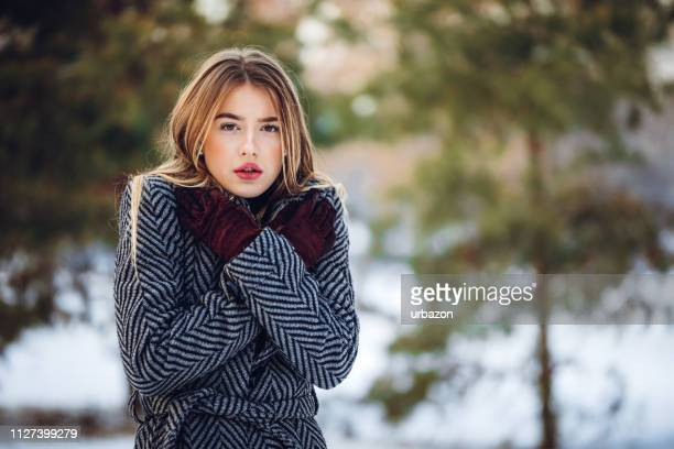 beauty in the snow - shaking stock pictures, royalty-free photos & images