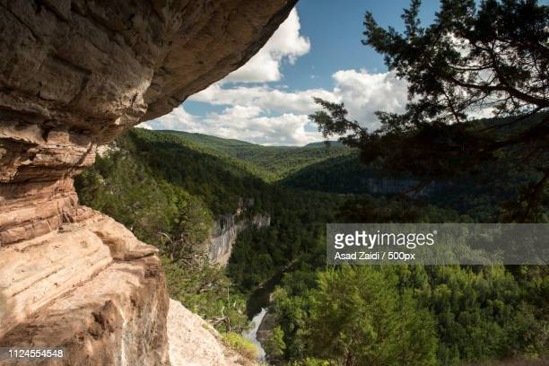 beauty is always dangerous - ozark mountains stock pictures, royalty-free photos & images
