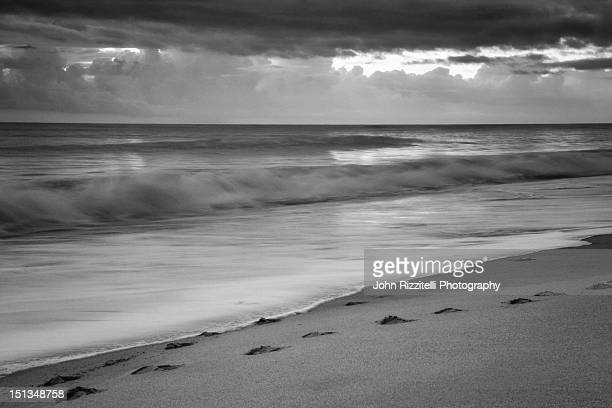 beauty of atlantic - vero beach stock pictures, royalty-free photos & images