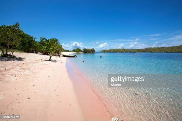 beauty of the beach - komodo island stock photos and pictures