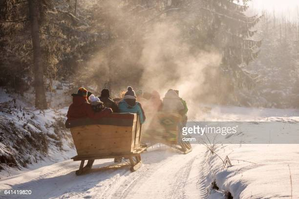 beautyful sleigh in the winter trough the forest