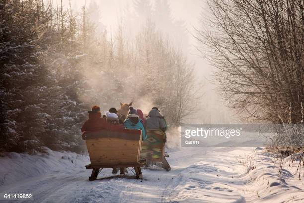 beautyful sleigh in the winter trough the forest - christmas horse stock pictures, royalty-free photos & images